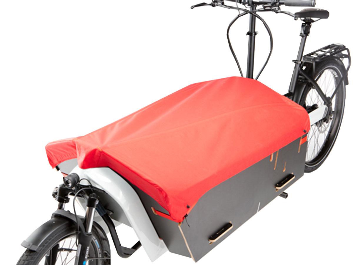 riese und m ller packster 80 pedelec schwerlastenrad kaufen. Black Bedroom Furniture Sets. Home Design Ideas