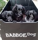 Lastenfahrräder für Hunde